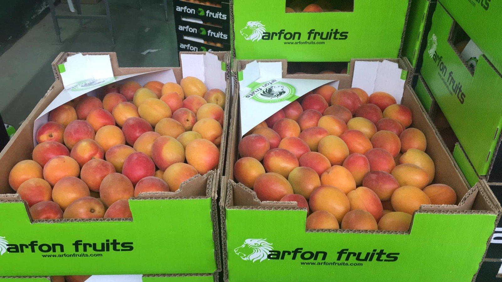 Cajas de frutas de la empresa Arfon Fruits