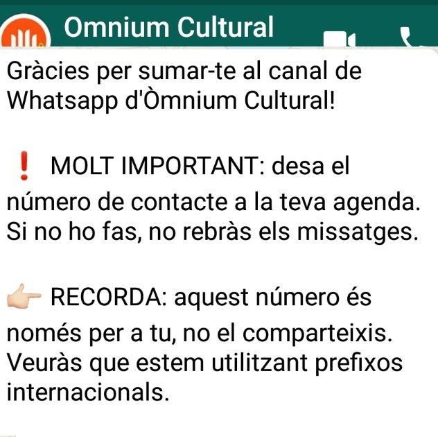 Mensaje de bienvenida al chat de Òminum Cultural
