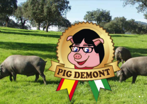 pig demont puigdemont