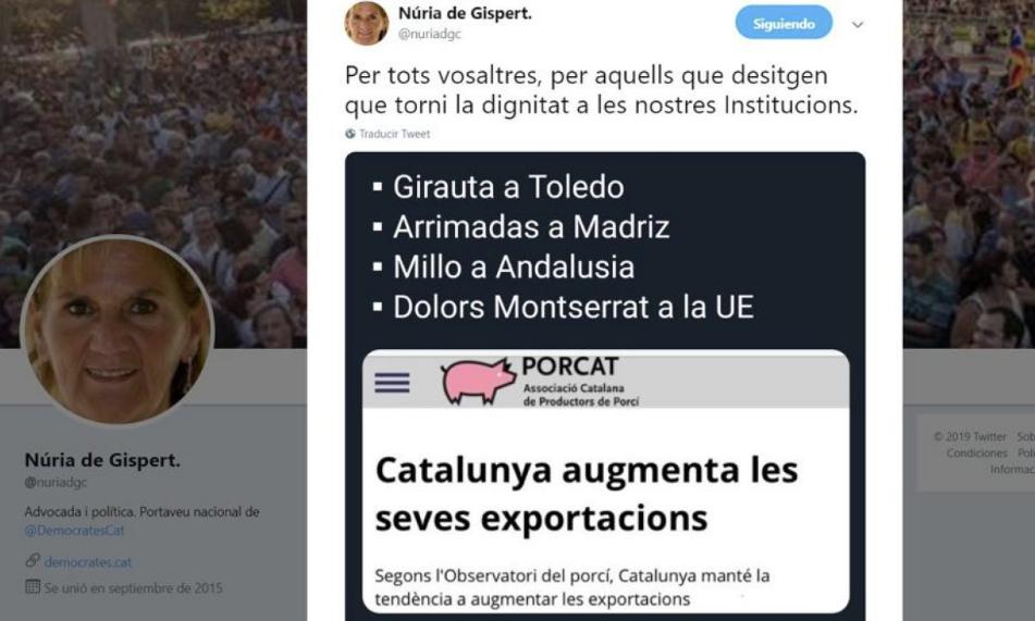 El tuit sobre cerdos y rivales políticos de Núria de Gispert