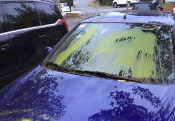 Pintura groca al coche de una regidora socialista de Mont-rojo