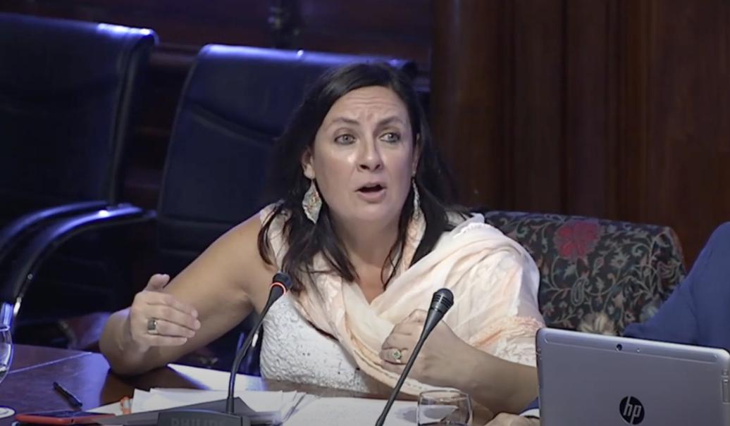 Susana Beltrán, de Cs, en la comisión parlamentaria de Cultura