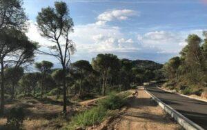 Terrenos de Montcal, en Begur, donde el ayuntamiento ha autorizado la constru
