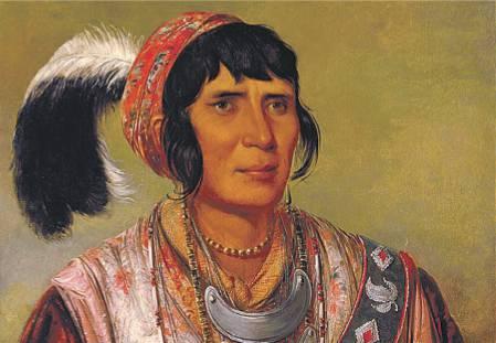 osceola seminola