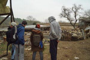 Visita d'AnimaNaturalis a la granja