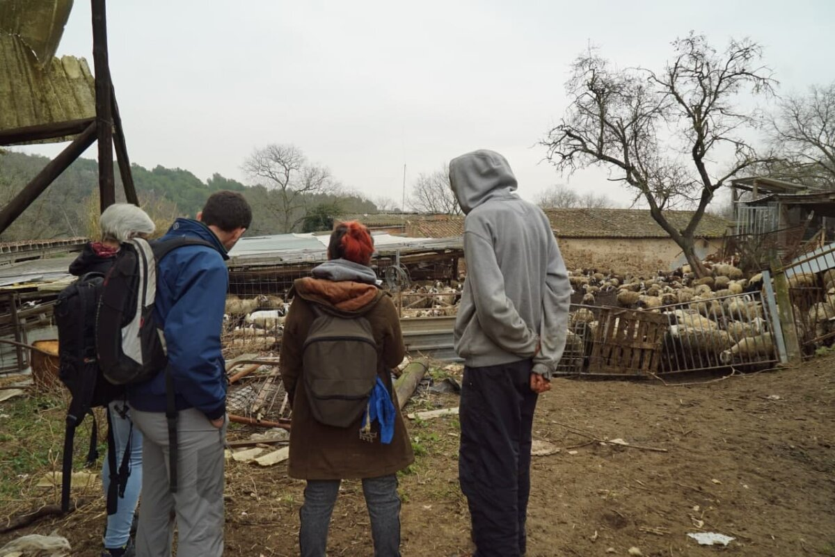 Visita de AnimaNaturalis a la granja